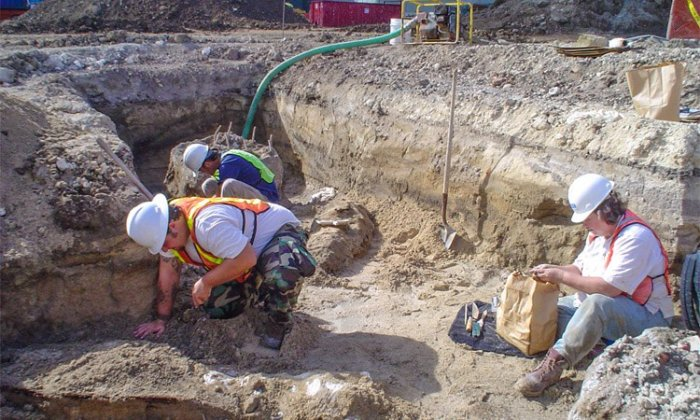 Photo: Archaeologists examine coffins impacted by piles driven into the ground to construct a luxury condominium